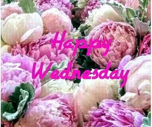 wednesday, 🌸, and 🌼 image