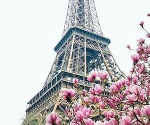 eiffel tower, flowers, and love image