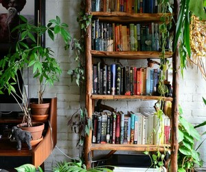 aesthetic, books, and plants image