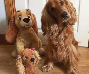 baby, golden, and toy image