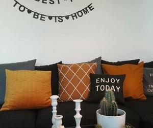 cactus, decor, and decoration image