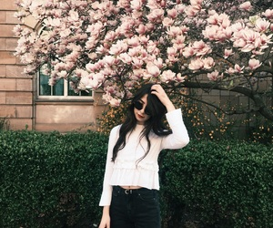 blossom, brown hair, and city image