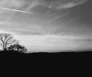 black and white and paisagem image