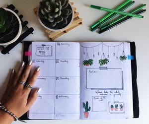 cactus, doodles, and green image