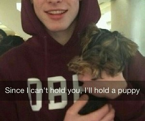 shawn mendes, puppy, and cute image