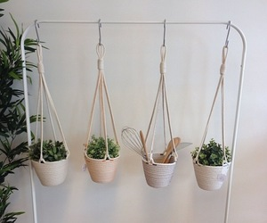 plants, indie, and white image