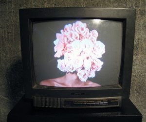 flowers, tv, and vintage image