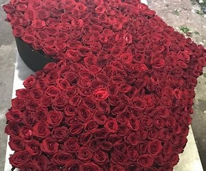 flowers, roses, and heart image