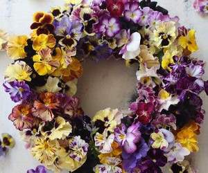 flower, pansy, and wreath image
