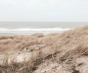 beach, wave, and dunes image
