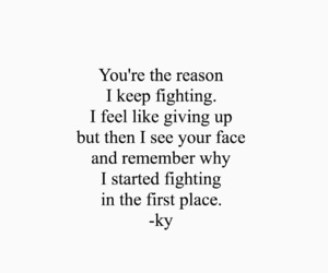 quotes, face, and fight image