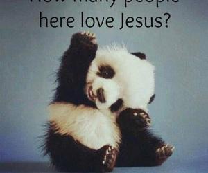 jesus, panda, and people image