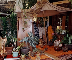 bohemian, fort, and plants image