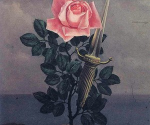 art, rose, and flowers image
