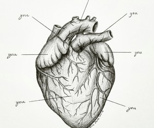 anatomy, art, and drawing image