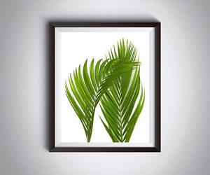 digital print, palm, and tropical image