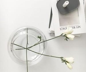 white, flower, and minimal image