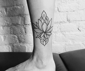 b&w, water lily, and lines image