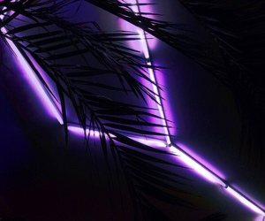purple, neon, and glow image