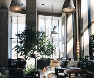 coffee shop, lifestyle, and place image