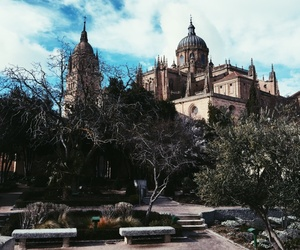 bench, castle, and cathedral image