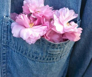 flowers, pink, and jeans image