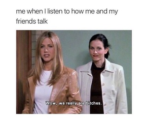 friends, funny, and bitch image
