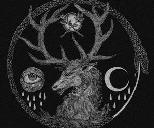 deer, eye, and horns image