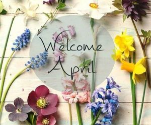 flowers, spring, and april image