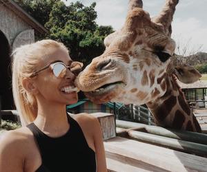 animal, girl, and giraffe image
