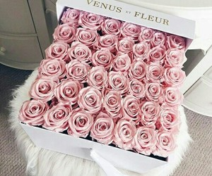 beautiful, flower, and gift image