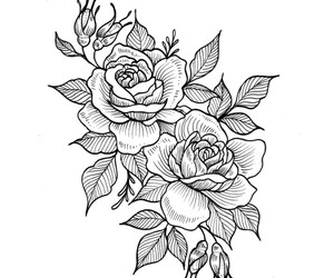 draw, roses, and tattoo image