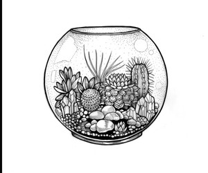 cactus, draw, and plants image