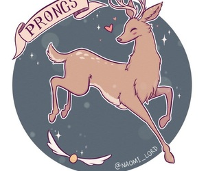 harry potter, james potter, and prongs image