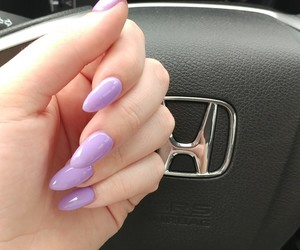 claws, lavender, and nails image