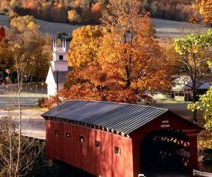 autumn, fall, and covered bridge image