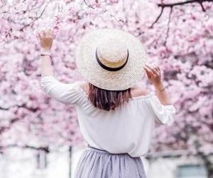 spring, cherry blossom, and sakura image