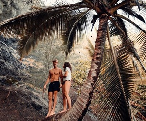 summer, palm trees, and couple image