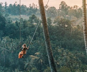 travel, swing, and nature image