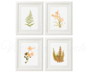 etsy, vintage flower, and fern image