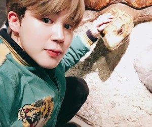 turtle, bts, and jimin image