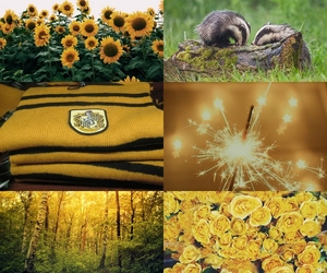 badger, flowers, and harrypotter image