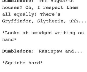funny, dumbledore, and harry potter image