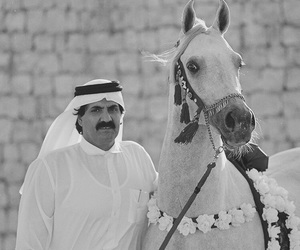 animals, arab, and arabic image