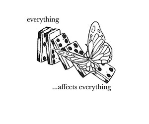everything affects everything