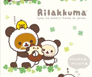 cuteness, panda, and rilakkuma image
