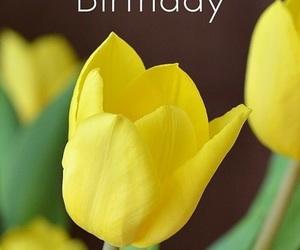 birthday, happy, and tulip image