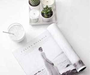 white, magazine, and plants image