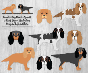 etsy, king charles spaniel, and cavalier king image