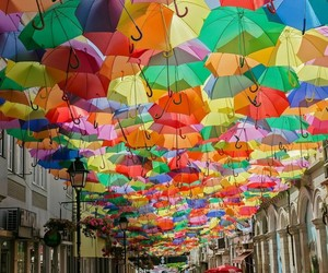 color and umbrella image